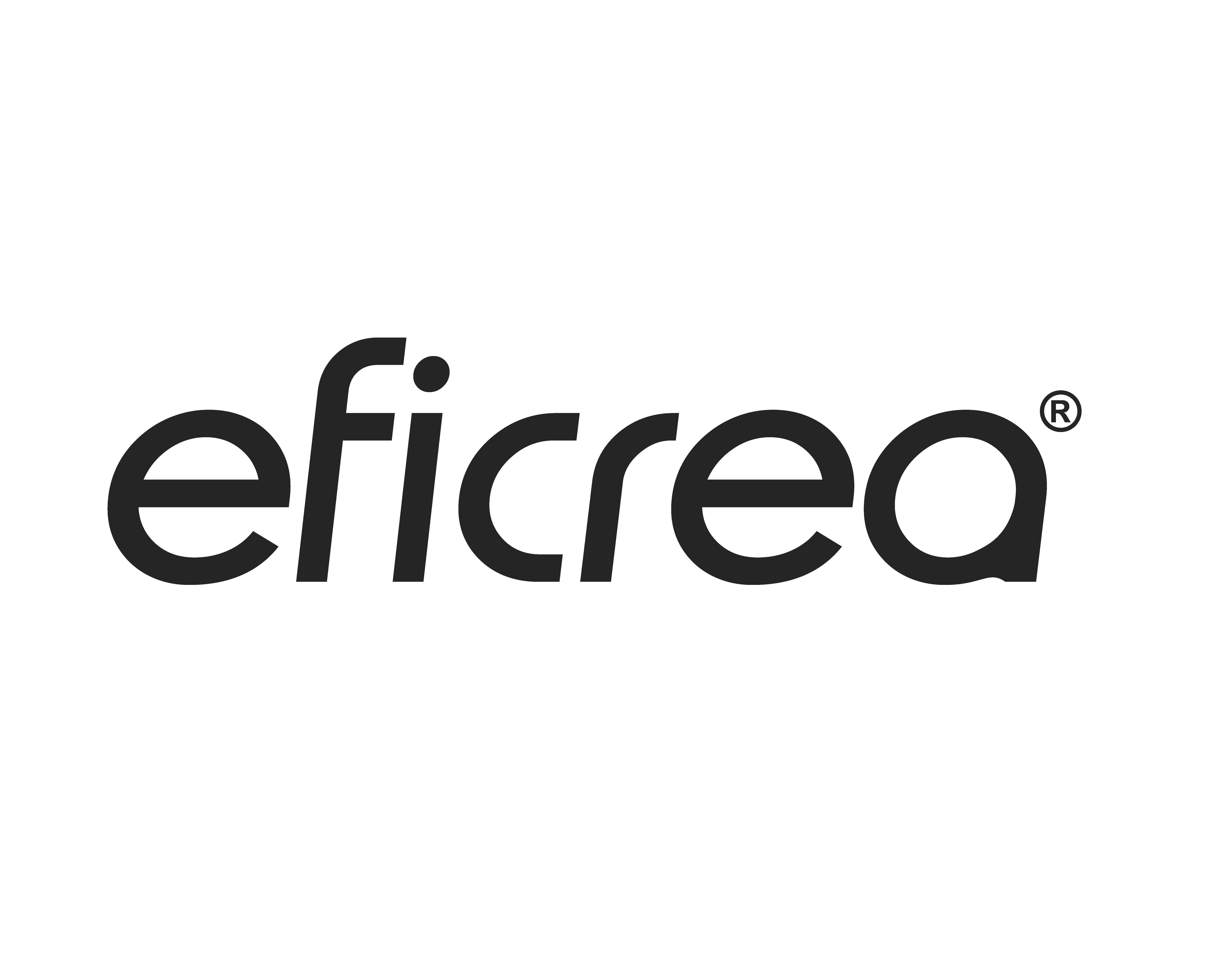 logo_EFICREA_2013